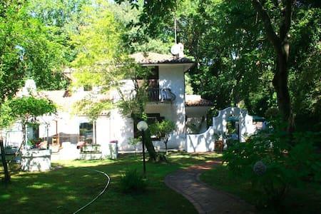 Circeo National Park Rome Italy - Sabaudia - Casa de campo