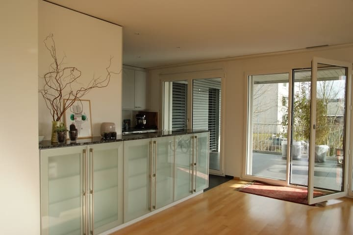 Appartment close to Zürich for rent - Küsnacht - アパート