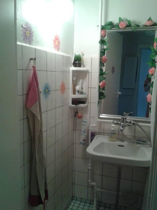 Toilet med brusebad lidt småt men godt