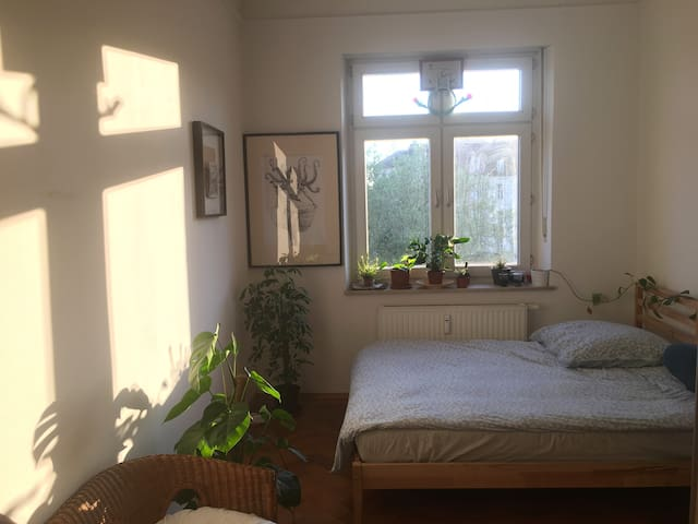 Bright room 10 mins from City Center