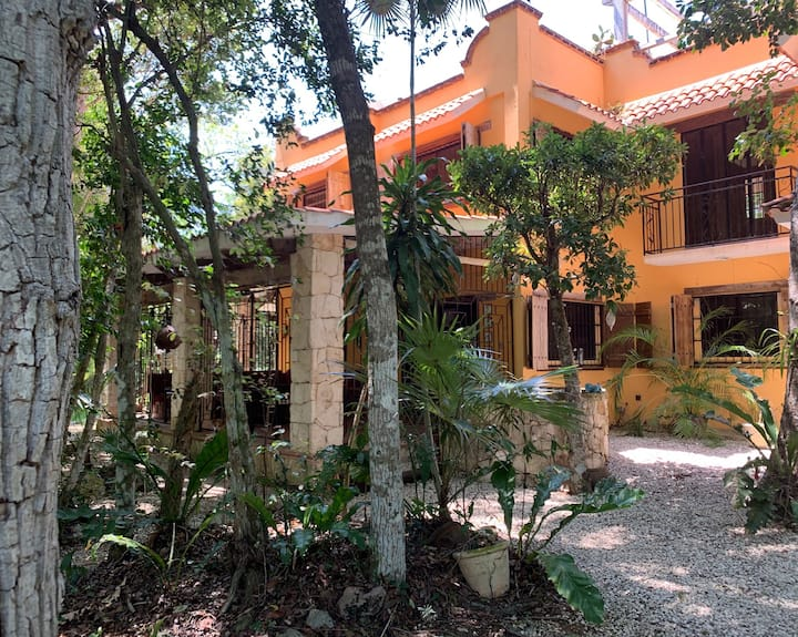 Mayan Paradise, Los Aluxes de Balam