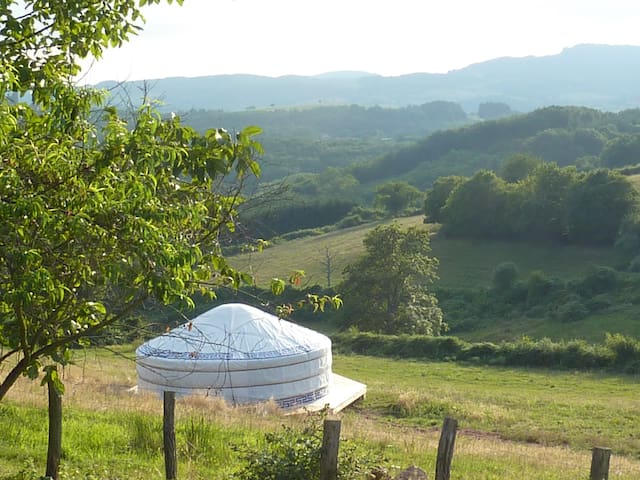 Mongolian yurt in the middle of a meadow