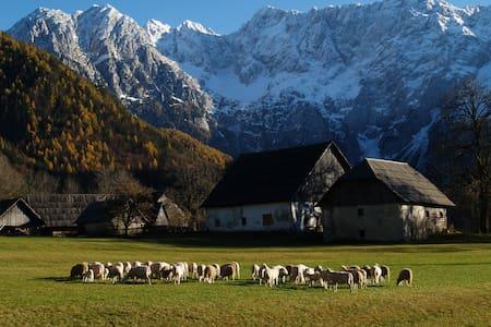 Rent a camper in Slovenia - Zgornje Jezersko