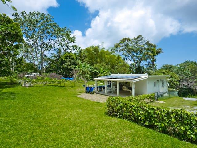 Tree House eco-friendly villa