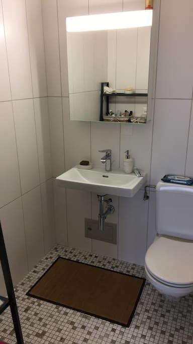 Salle de bain avec toilettes. L'autre salle de bain dispose d'une baignoire.