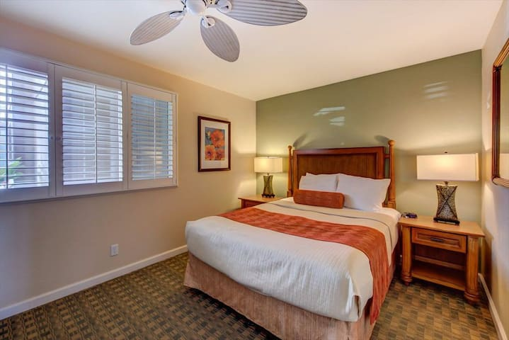 Bedroom with queen bed, large closet, TV, and dresser.