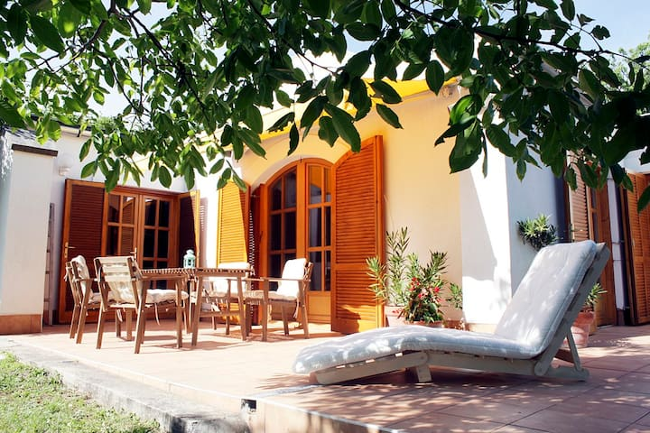 Charming Vinery House with Terrace - Paloznak