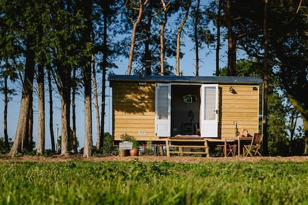 Godwick Shepherds Hut -Norfolk Horn - Kings Lynn - Pondok