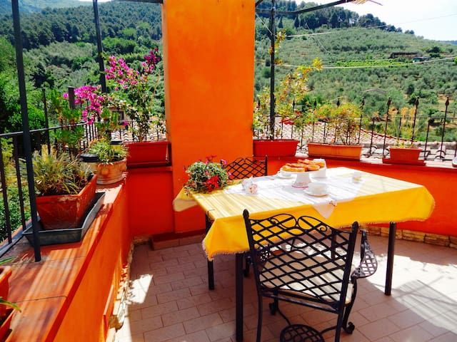 Terrace on the hills of Pisa - Montemagno - Apartemen