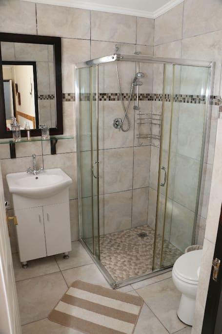 Bathroom with shower, Wash Basin, Mirror, Toilet