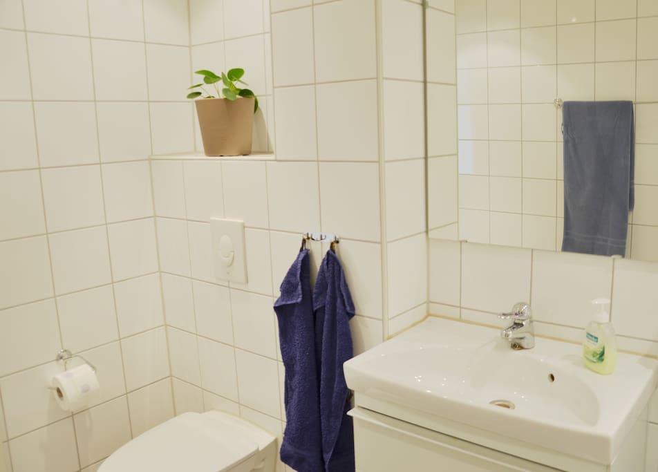 Nice, modern bathroom with washing machine