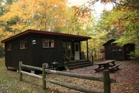 Ellis -Lakeside Cabin on Beach Pond with Sauna