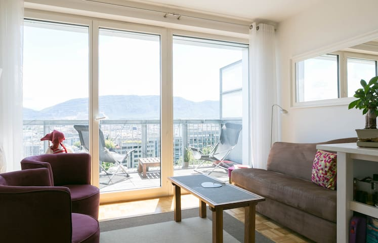 spectacular view of Geneva  - Geneva - Apartment