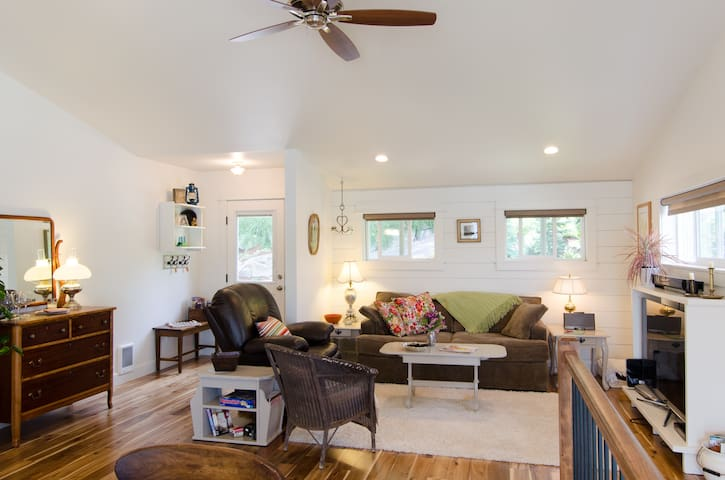 Living area with plush carpet, ceiling fan, recliner and new double sofa bed.