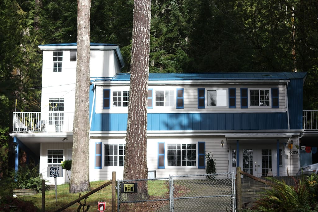 The house in the forest.  GuestSuite located upstairs, two windows on the right are the master bedroom.