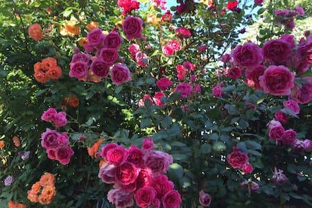 The Rose Valley: Cozy & Quiet Room