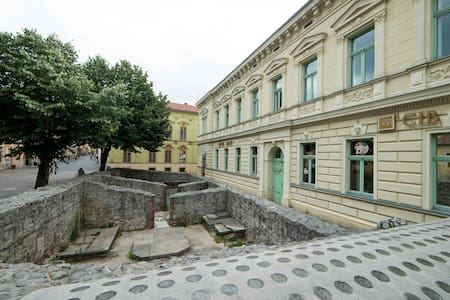 Elegant, Central, Apartment, Pecs - Pécs - 公寓