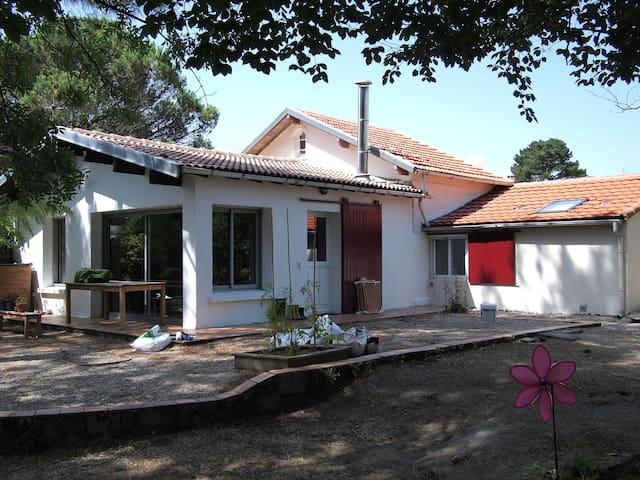 Maison des amoureux de la nature houses for rent in for Amenagement petit jardin 70m2