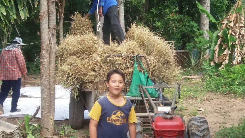 Nong Prue Homestay - Tambon Nong Prue