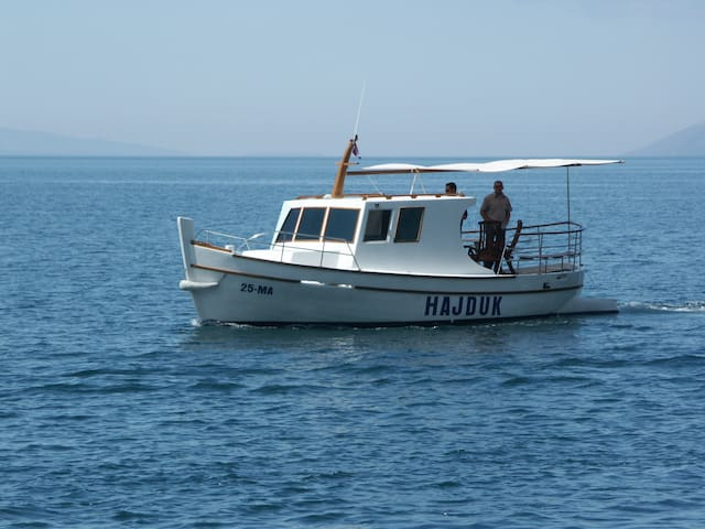 Rent-a-boat for daily excursions - Tučepi - Barca