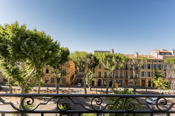 LUMINOUS LOFT ON COURS MIRABEAU, AIX EN PROVENCE
