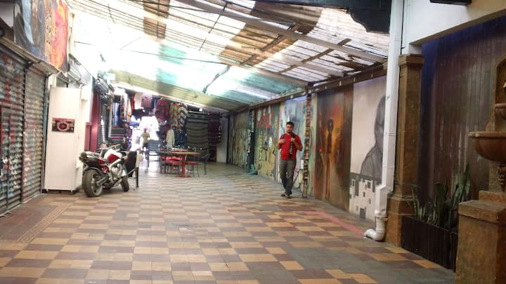 visiting the art alley