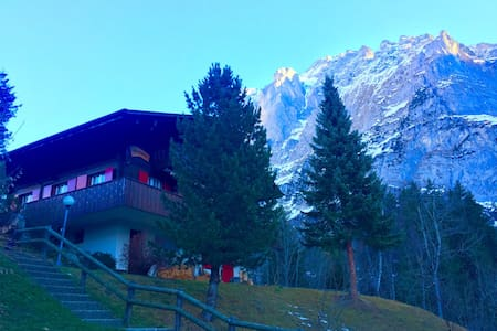 Charming Chalet apt w view of Eiger