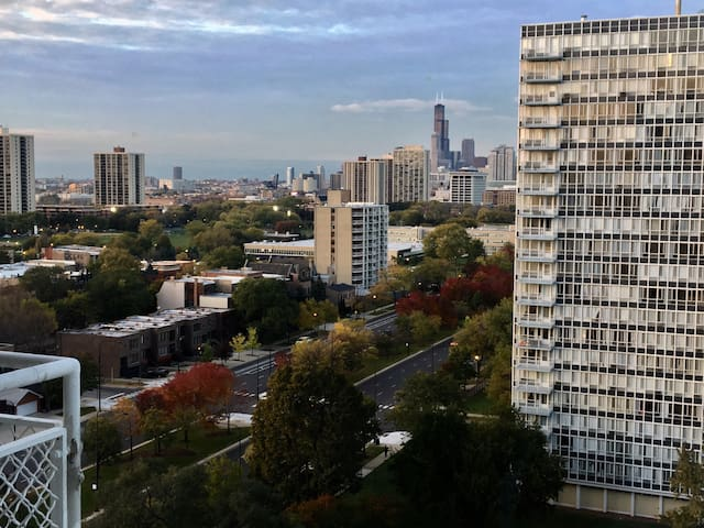 Studio near McCormick - Chicago - Appartement