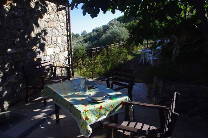 Appartamento in villa - MONEGLIA