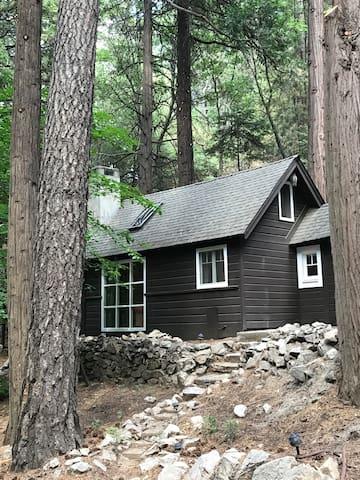 Super Cozy, Quiet, Secluded Loft Paradise