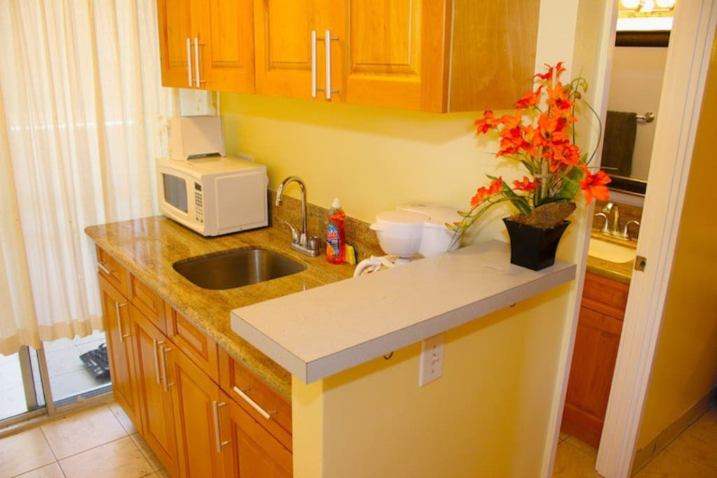 Great Kitchen area with Microwave and hotplate.  Full fridge is on balcony