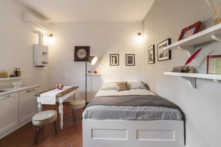 Central Pitti Studio Flat