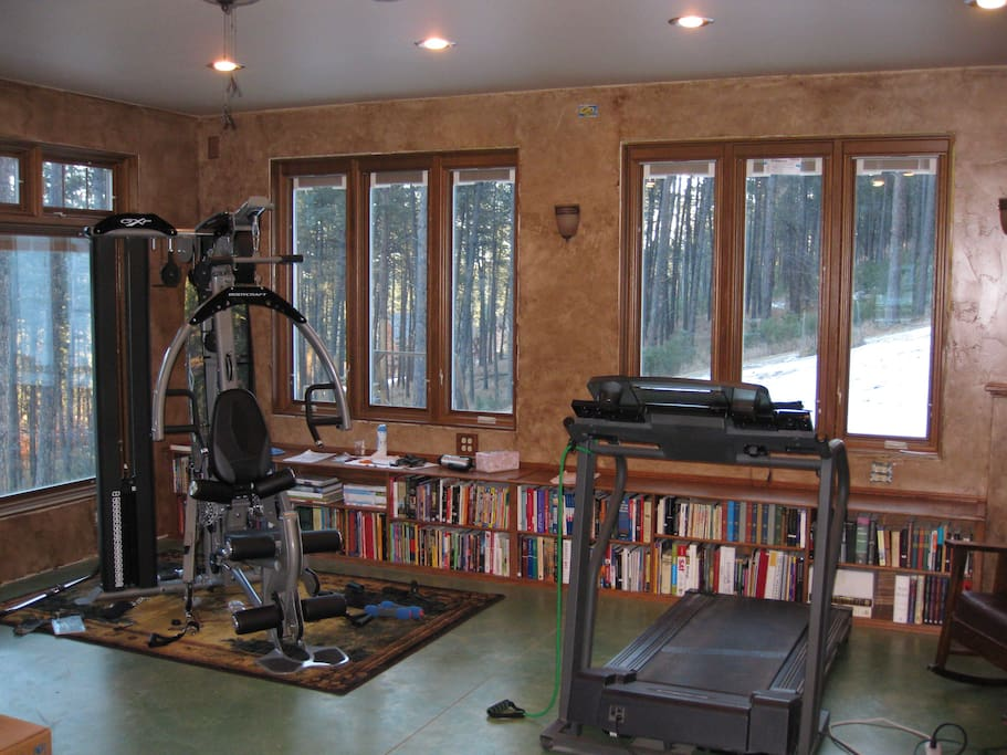 Home gym and treadmill