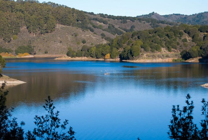 Private inlaw studio by Lake Chabot (40 min to SF)