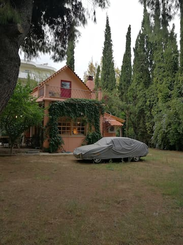 Μονοκατοικία με κήπο Vila with  garden