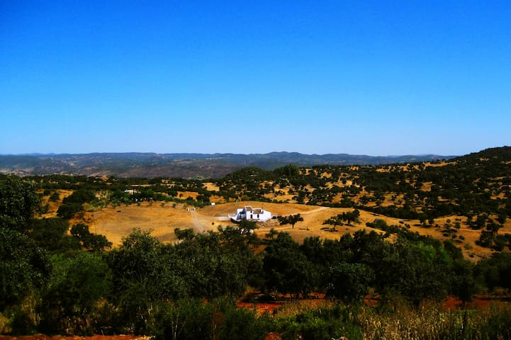 KNOW ANDALUCIA IN A ORGANIC FARM