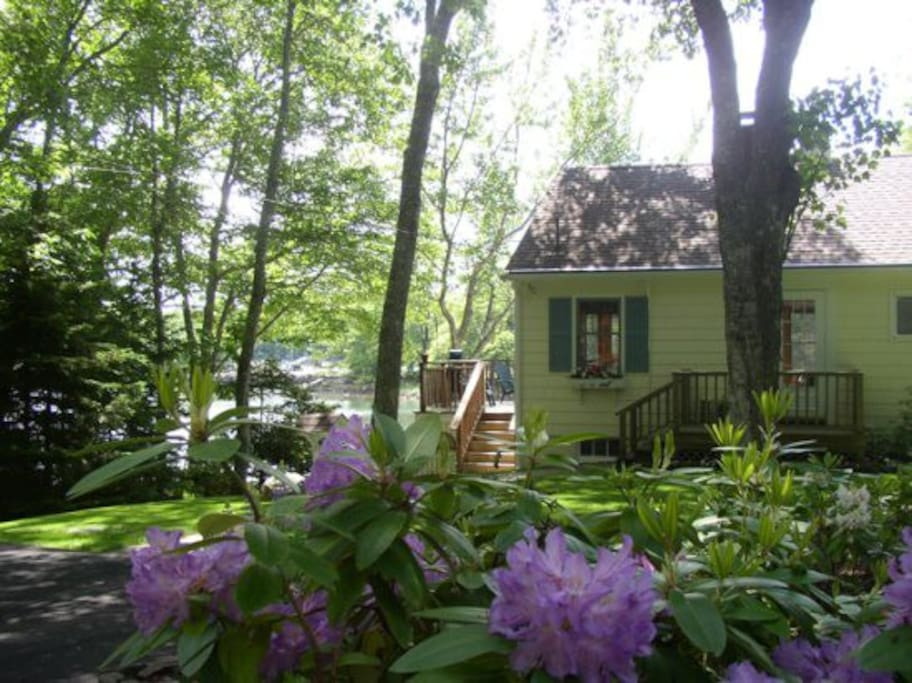 View of Dash Inn in early June when the Rhododendrons and Azaleas are in full bloom