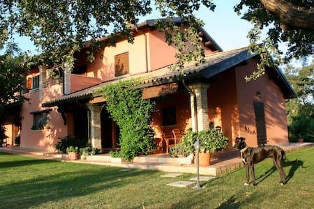 Agriturismo I Due Carpini - Città Sant'Angelo - 別荘