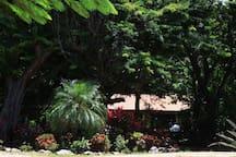 Casa Kalana, surrounded in lush greenery and wildlife.