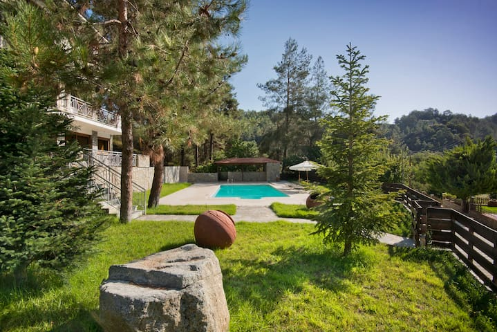 Dreamy mountain villa with private swimming pool