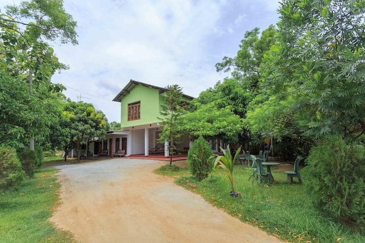 Jayaru's Home