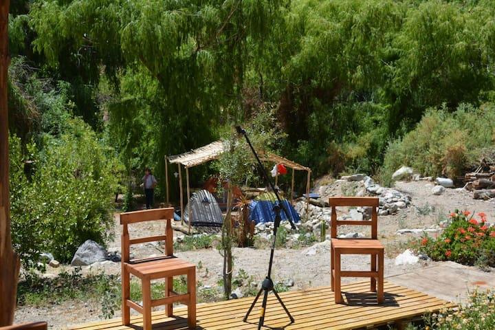Camping Ecocentro La Ortiga