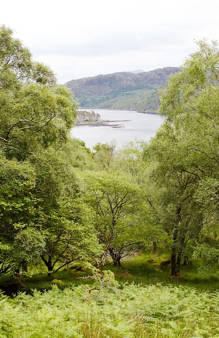 View over the loch