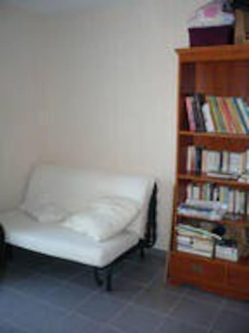 Bureau/Bibliothéque