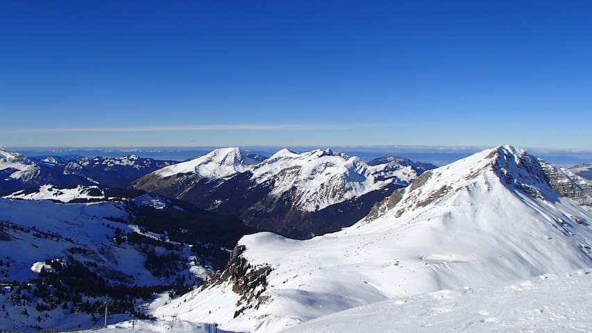 Spacious luxury duplex in the Alps