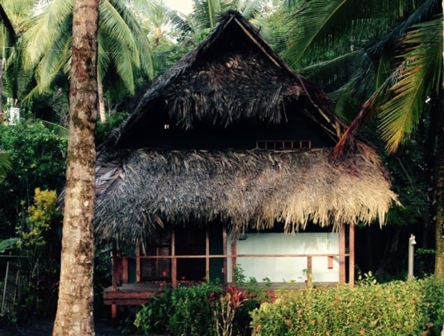 Thatched Roof Beach Front House
