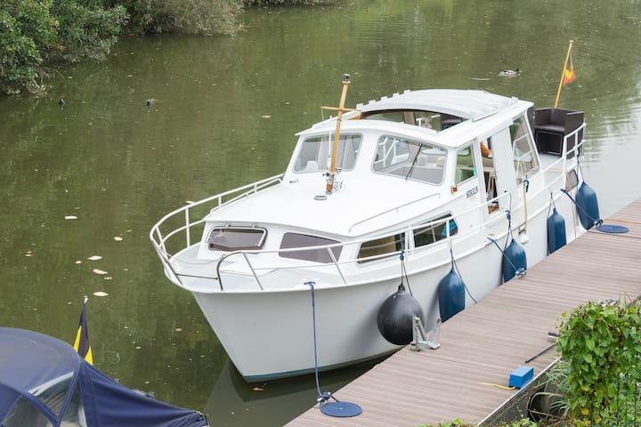 Boot op de Dender in 9402 Pollare - Ninove - Ninove