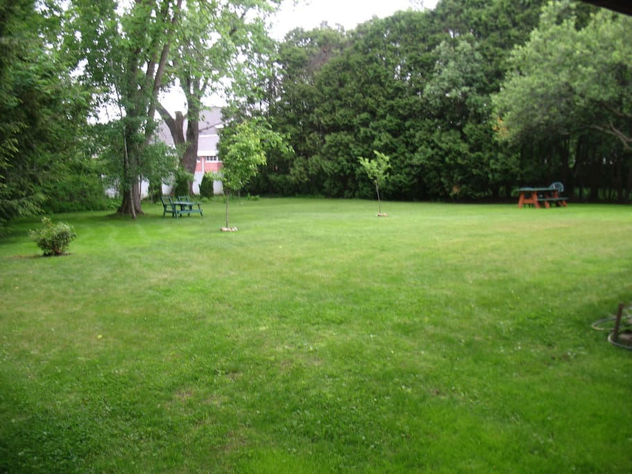 Private Backyard, Picnic Table, Swing Set