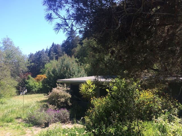 Cottage on 20 beautiful acres - Soquel - Cabin
