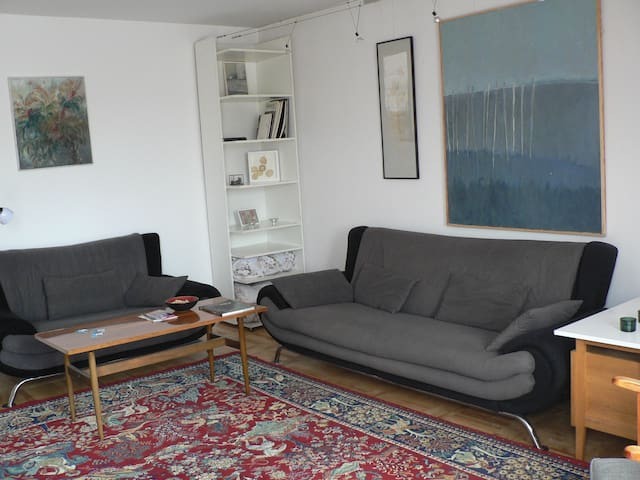 main room (27sqm), double sofa-bed and sofa